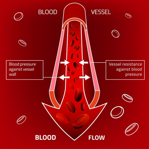 increase blood flow to the penis